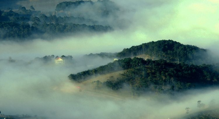 Thung Lũng Dasar Đà Lạt